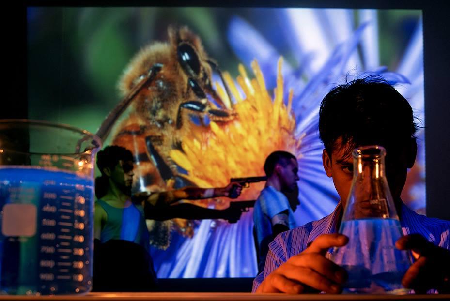 Animalia. Ciencia en acción: evolución e involución de las especies